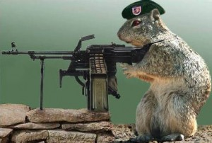 Killer squirrel with machine gun, wearing military-style beret